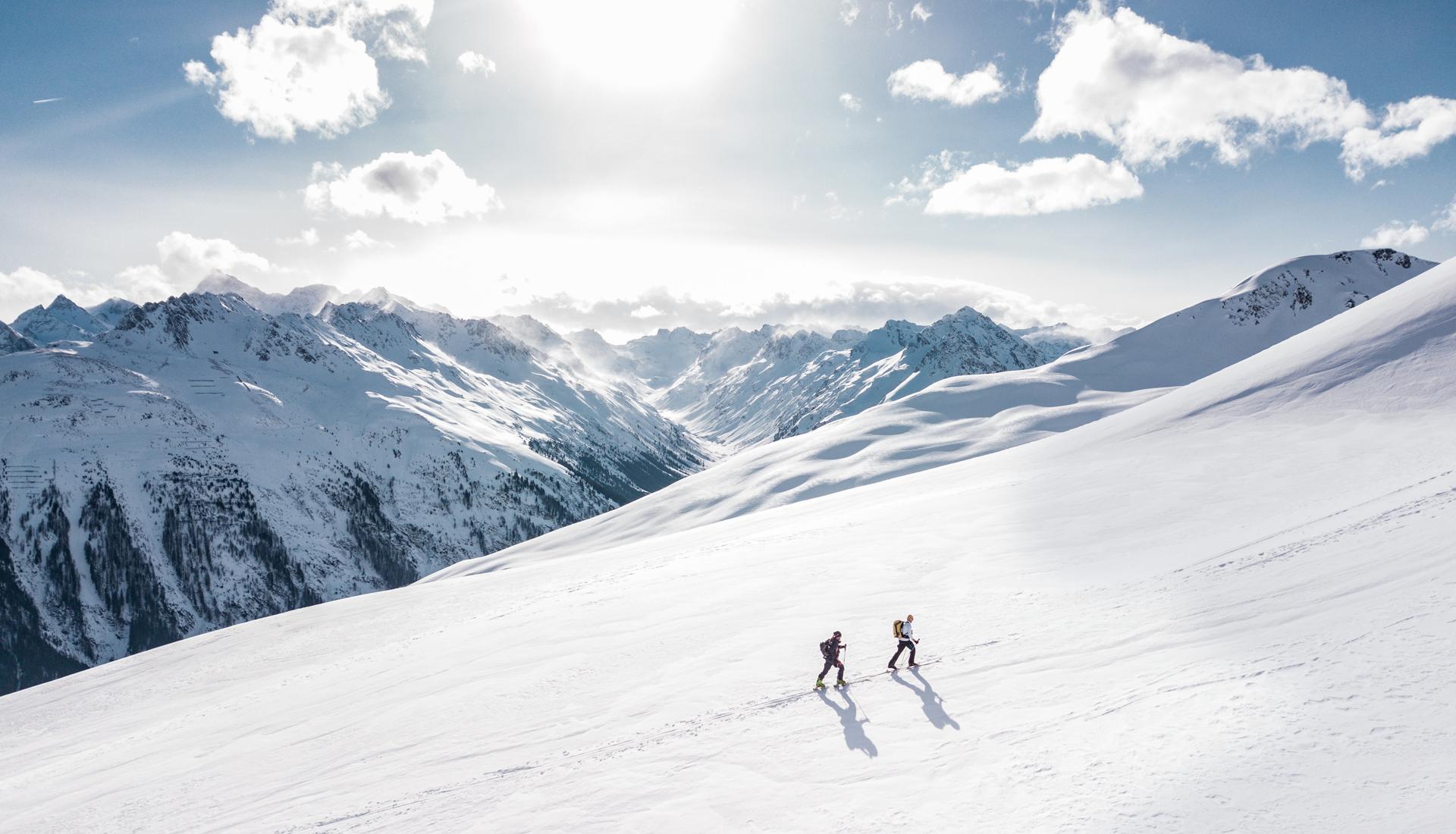 Foster + Svensson Winter
